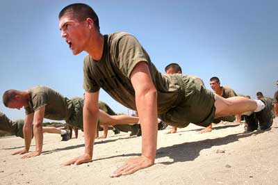 best-push-up-workout